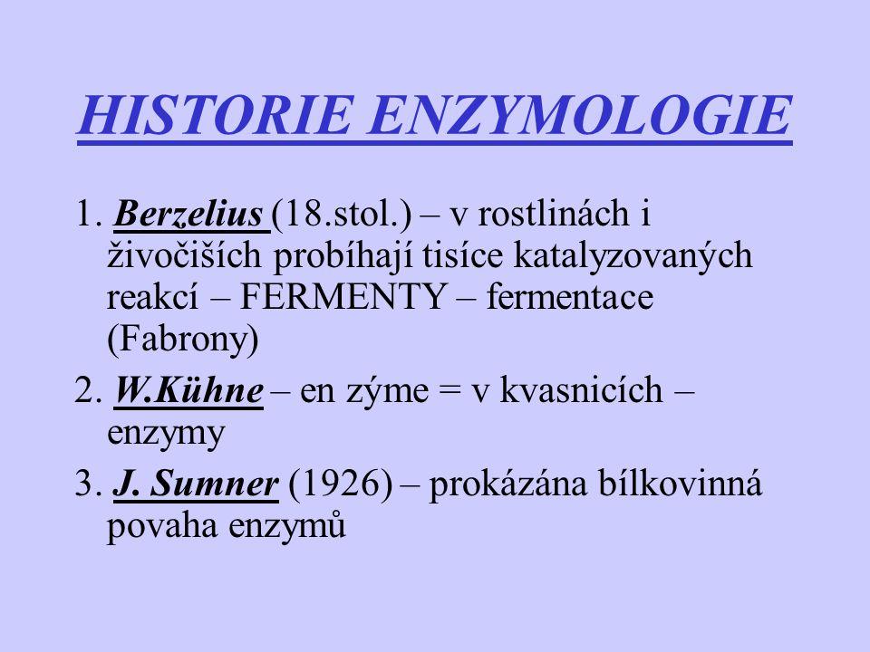 HISTORIE ENZYMOLOGIE 1. Berzelius (18.stol.) – v rostlinách i živočiších probíhají tisíce katalyzovaných reakcí – FERMENTY – fermentace (Fabrony)