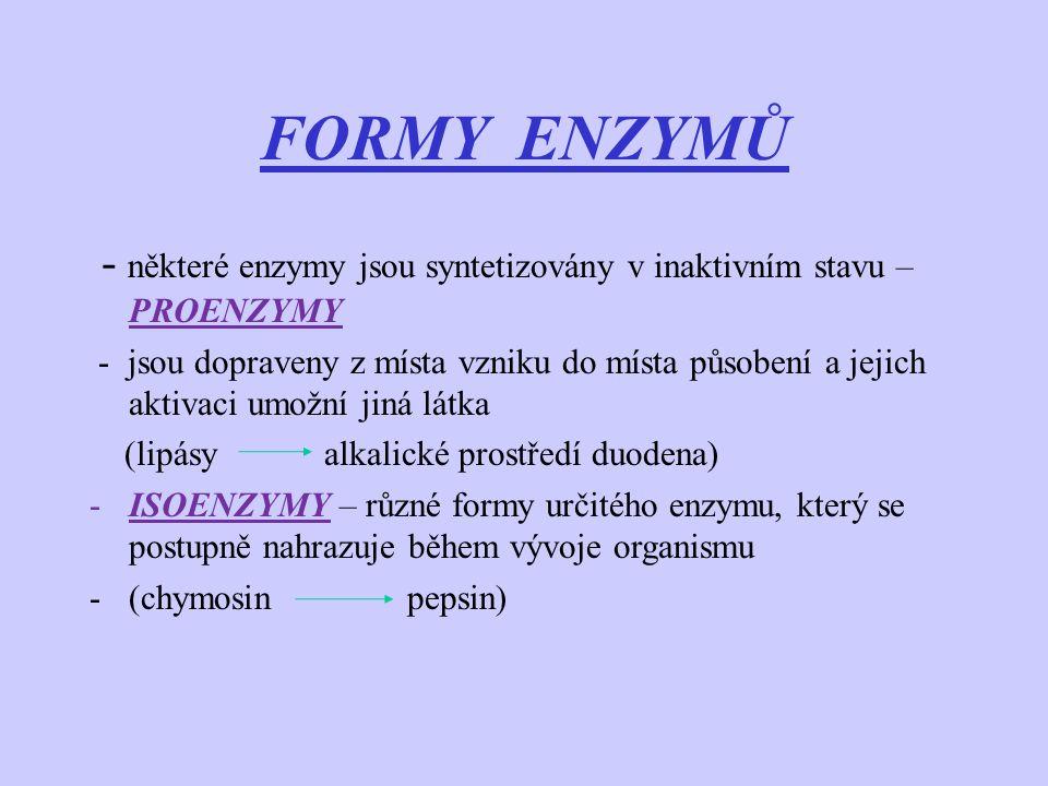 FORMY ENZYMŮ - některé enzymy jsou syntetizovány v inaktivním stavu – PROENZYMY.
