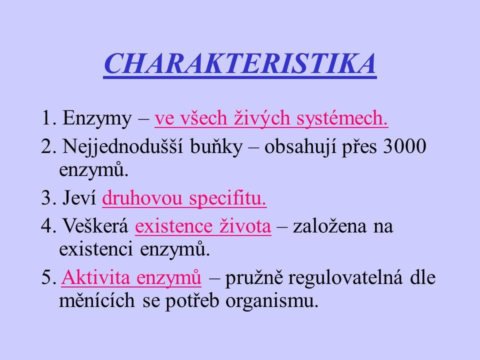 CHARAKTERISTIKA 1. Enzymy – ve všech živých systémech.