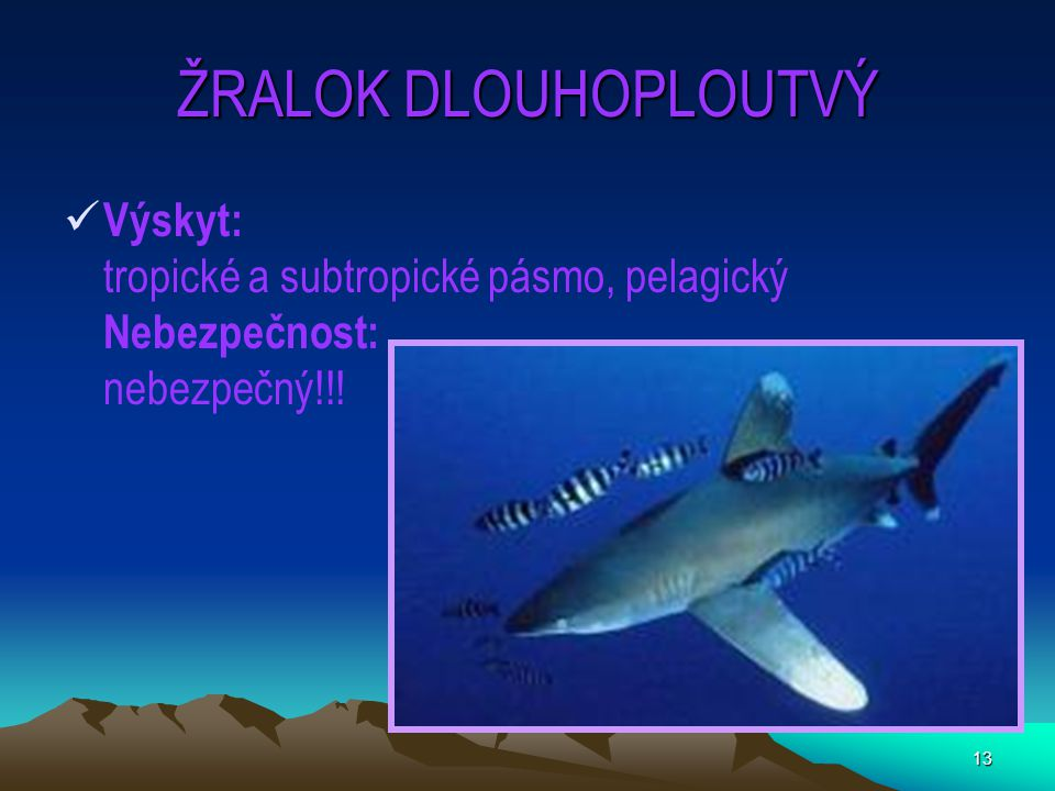 ŽRALOK DLOUHOPLOUTVÝ Výskyt: tropické a subtropické pásmo, pelagický Nebezpečnost: nebezpečný!!!