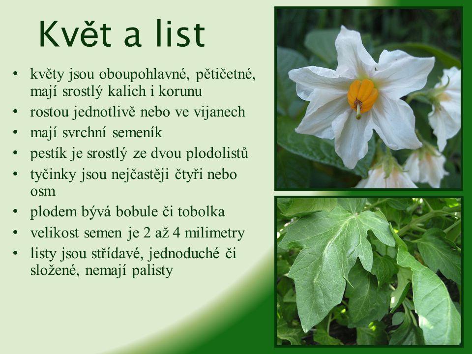 Květ a list květy jsou oboupohlavné, pětičetné, mají srostlý kalich i korunu. rostou jednotlivě nebo ve vijanech.