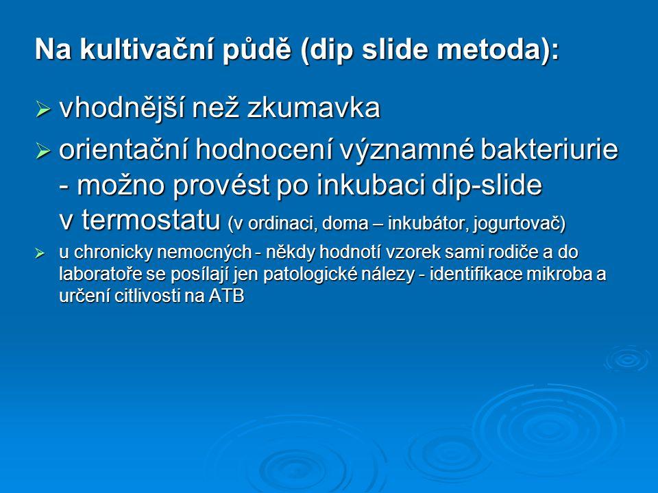 Na kultivační půdě (dip slide metoda): vhodnější než zkumavka