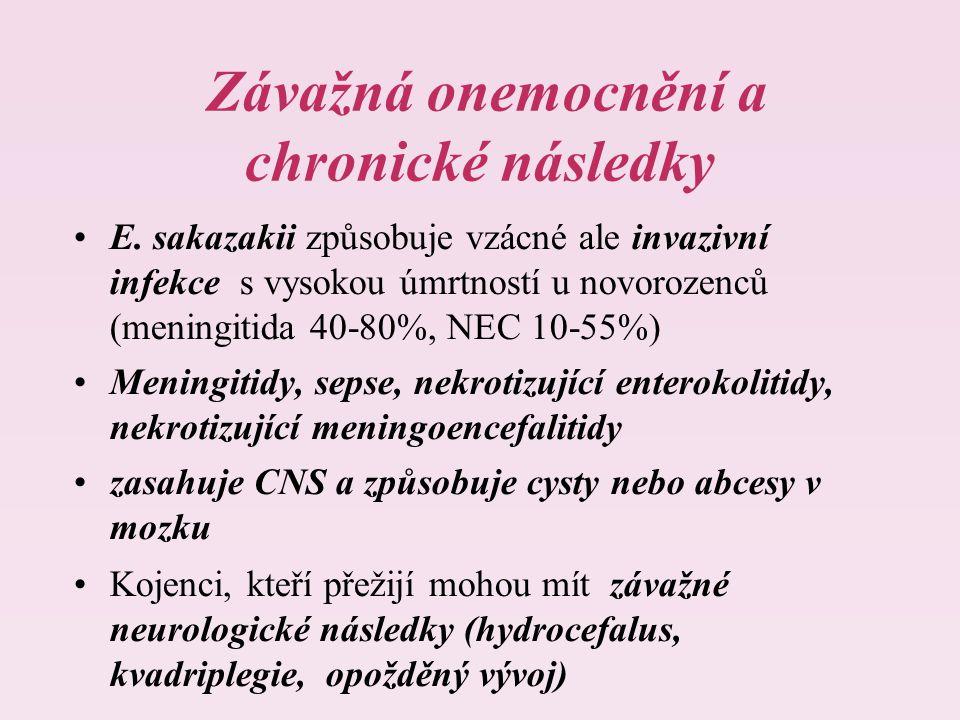Závažná onemocnění a chronické následky