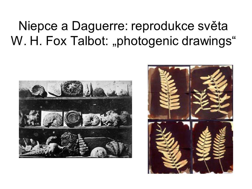 Niepce a Daguerre: reprodukce světa W. H