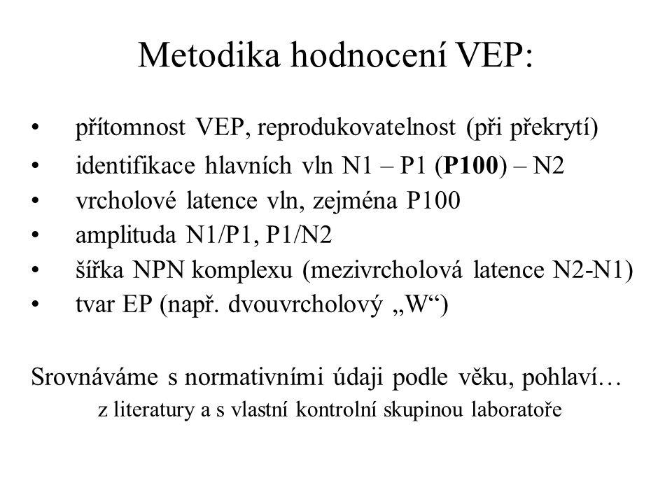 Metodika hodnocení VEP:
