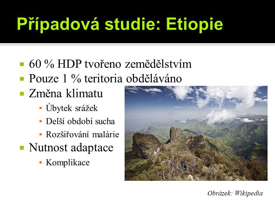 Případová studie: Etiopie