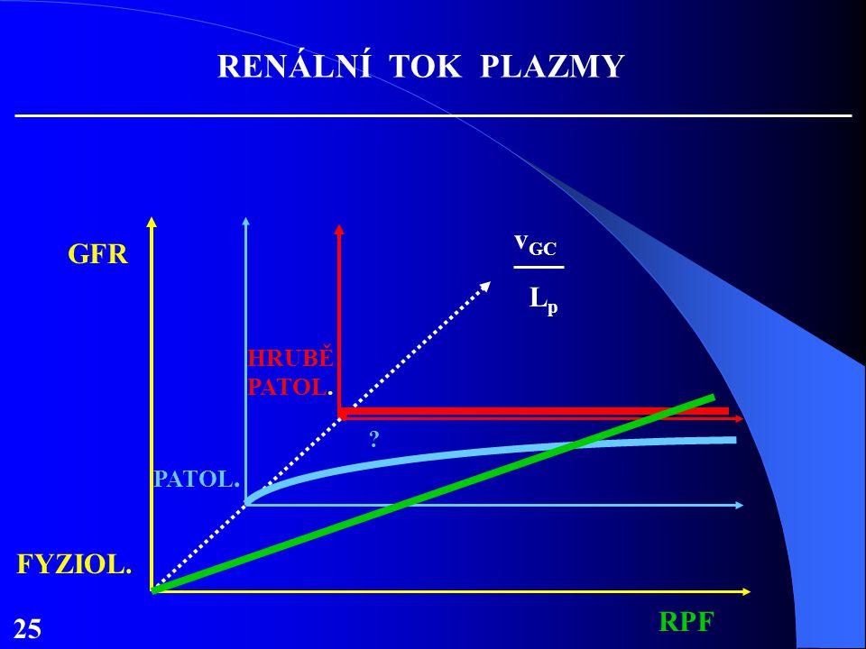 RENÁLNÍ TOK PLAZMY vGC GFR Lp HRUBĚ PATOL. . PATOL. FYZIOL. RPF 25