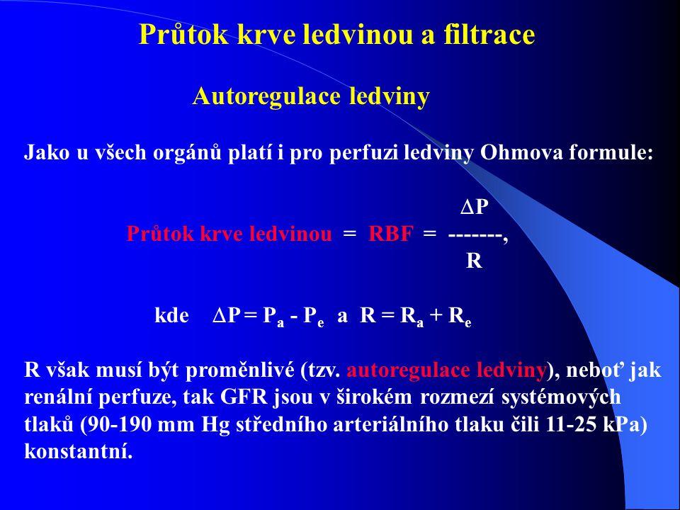 Průtok krve ledvinou a filtrace Autoregulace ledviny