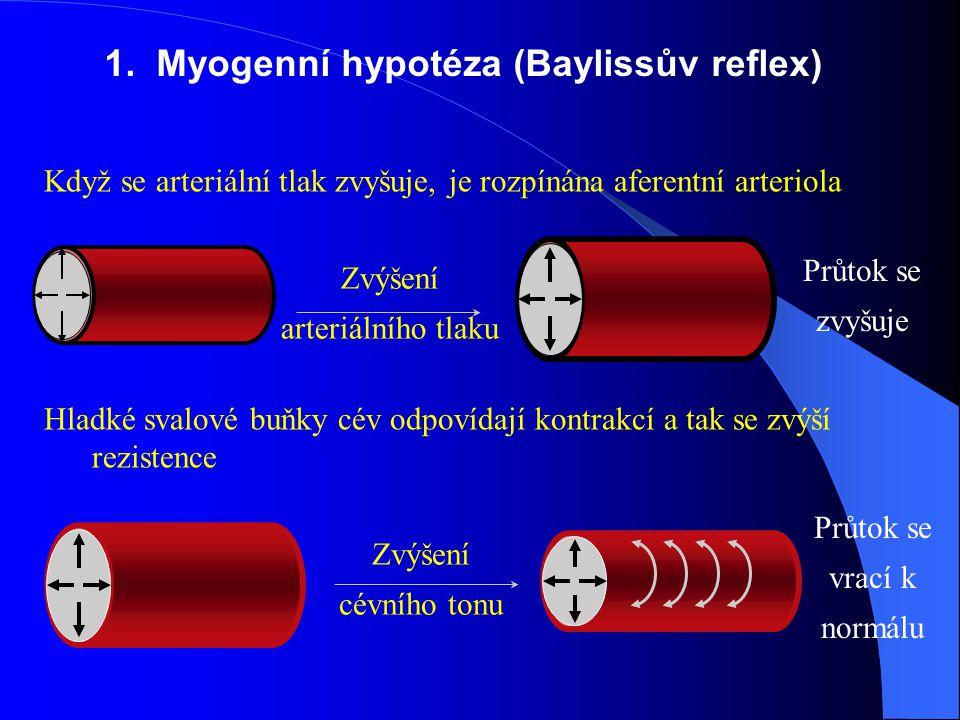 Zvýšení arteriálního tlaku