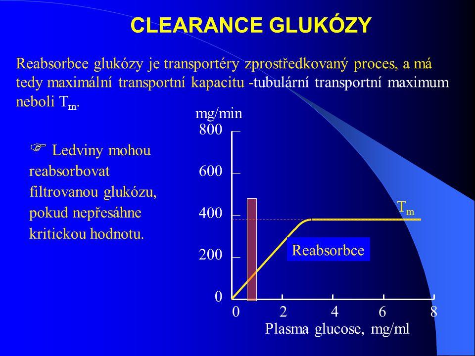 CLEARANCE GLUKÓZY
