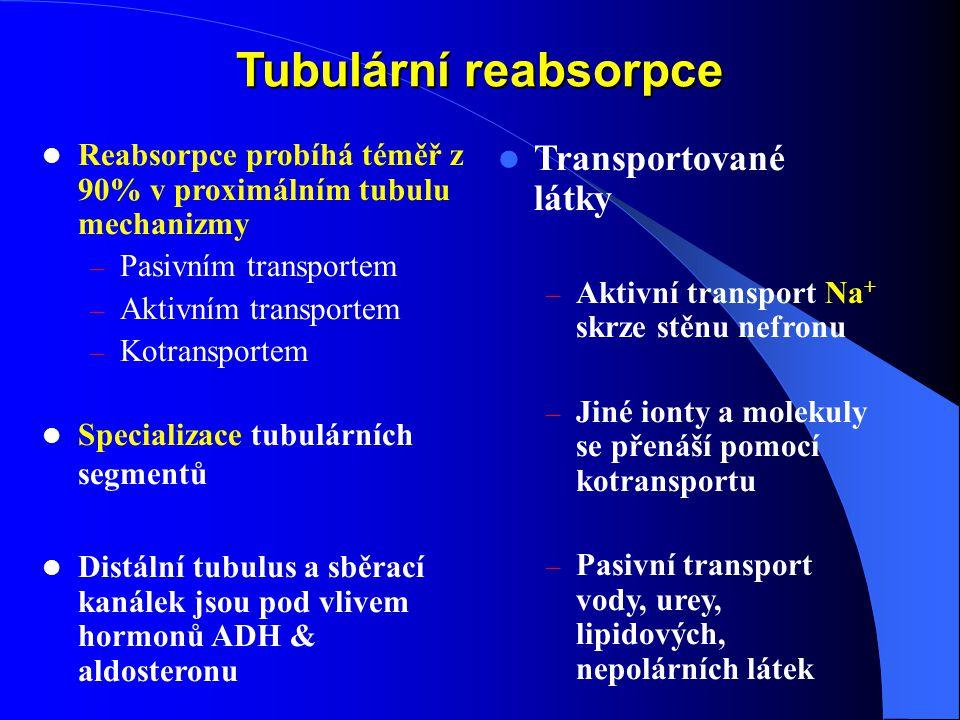 Tubulární reabsorpce Transportované látky