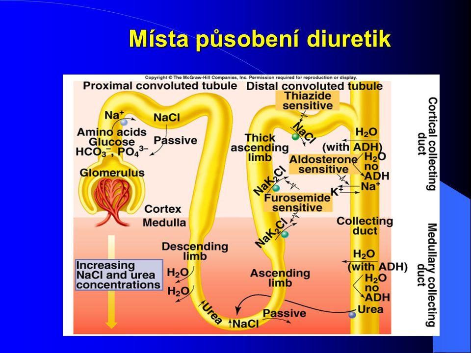 Místa působení diuretik