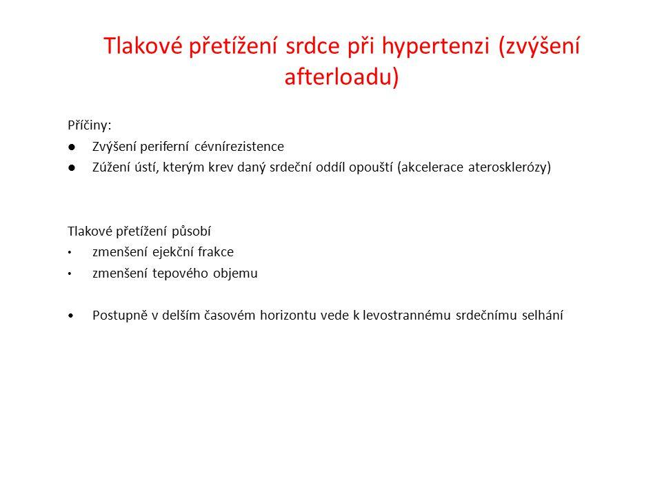 Tlakové přetížení srdce při hypertenzi (zvýšení afterloadu)