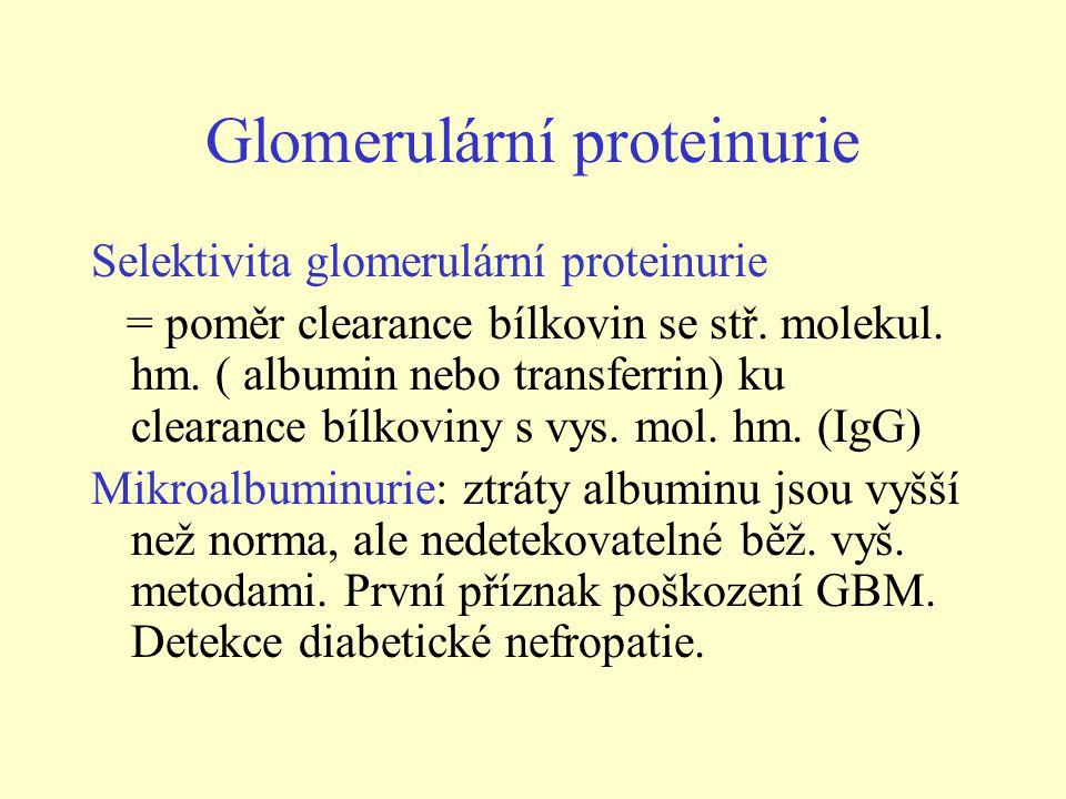Glomerulární proteinurie