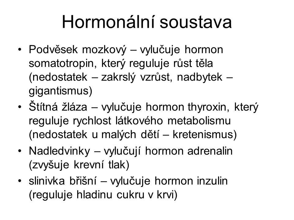 Hormonální soustava Podvěsek mozkový – vylučuje hormon somatotropin, který reguluje růst těla (nedostatek – zakrslý vzrůst, nadbytek – gigantismus)
