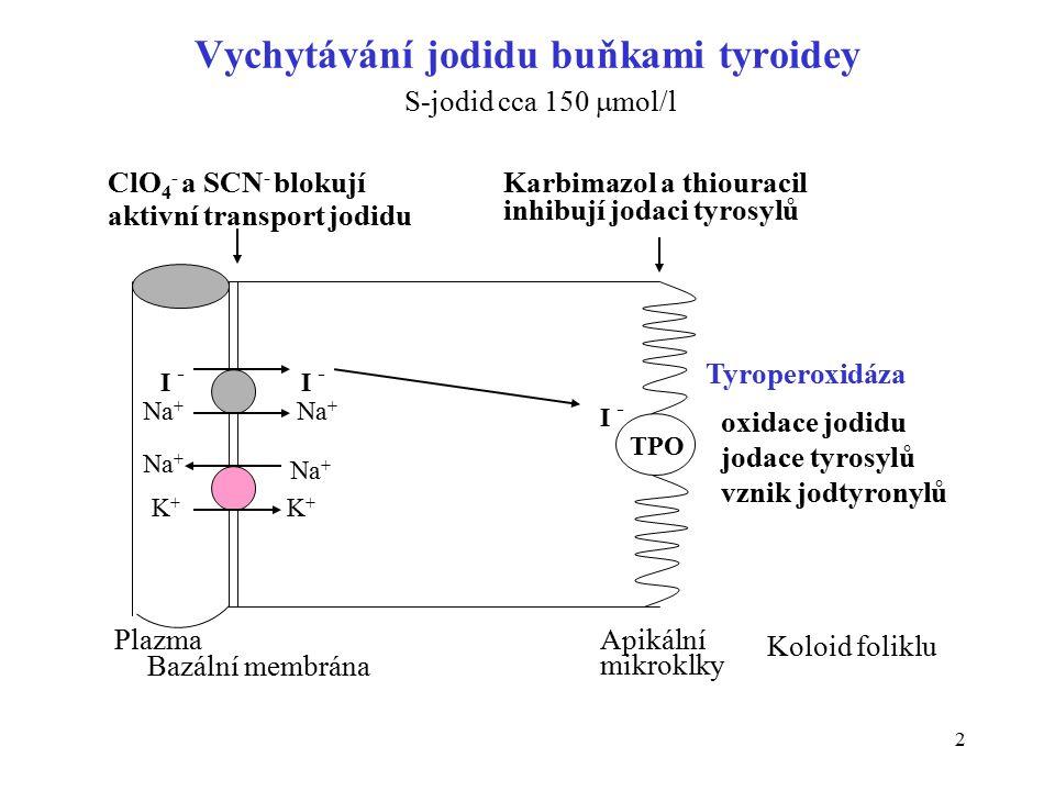 Vychytávání jodidu buňkami tyroidey