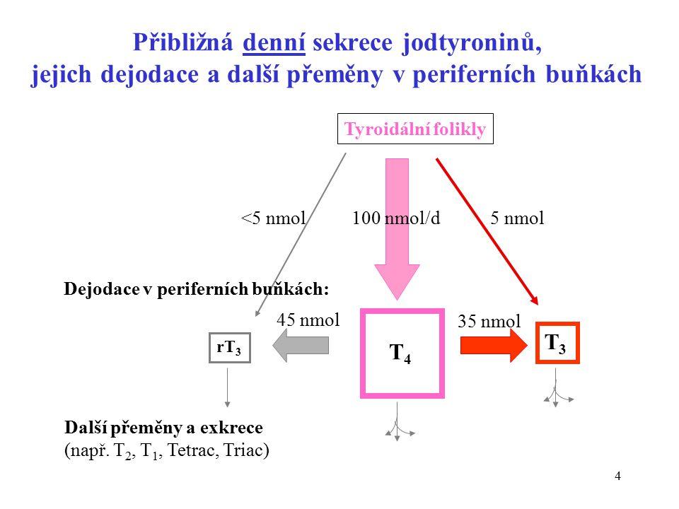 Přibližná denní sekrece jodtyroninů, jejich dejodace a další přeměny v periferních buňkách