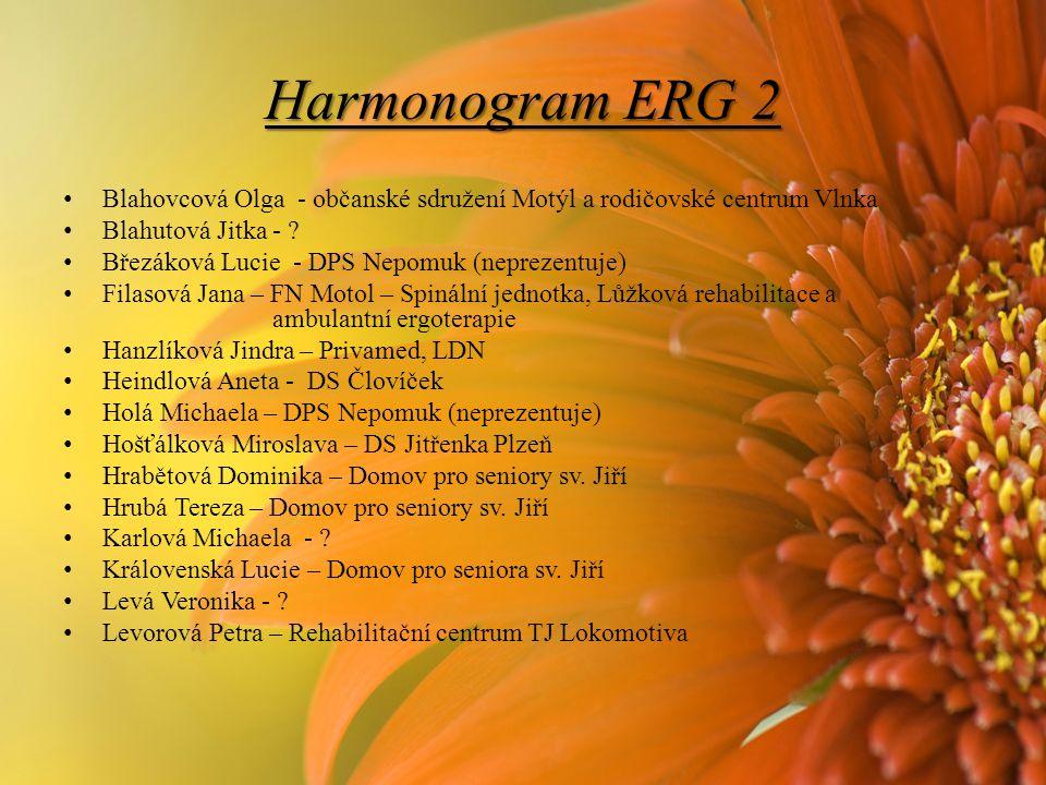 Harmonogram ERG 2 Blahovcová Olga - občanské sdružení Motýl a rodičovské centrum Vlnka. Blahutová Jitka -