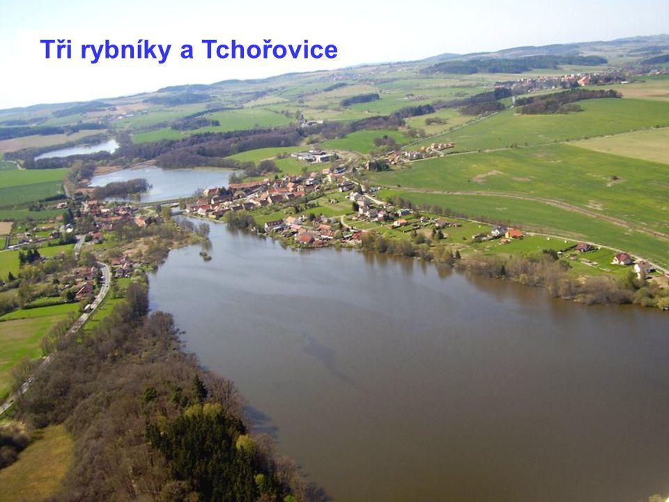 Tři rybníky a Tchořovice