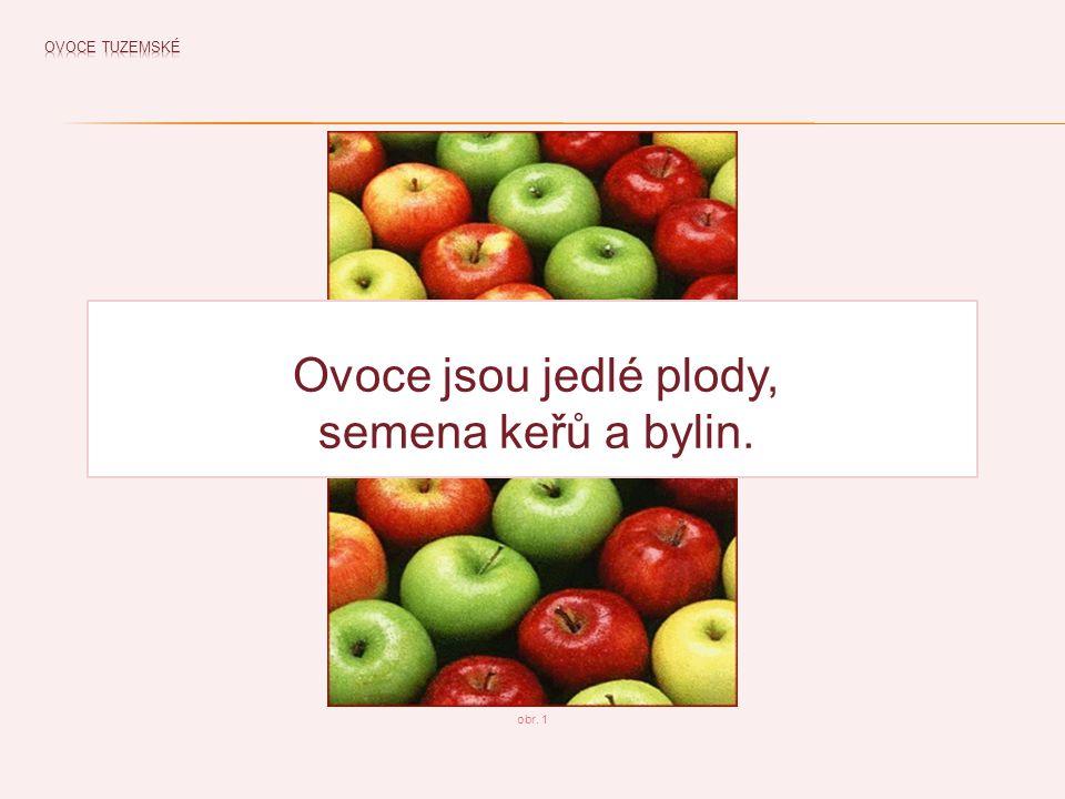 Ovoce jsou jedlé plody, semena keřů a bylin.
