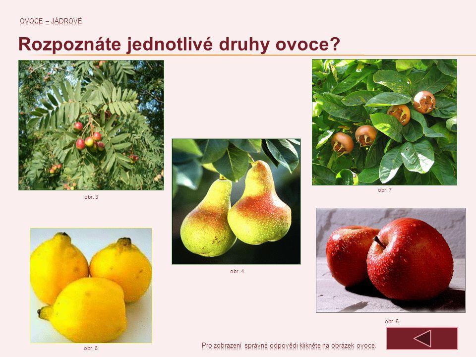 Rozpoznáte jednotlivé druhy ovoce
