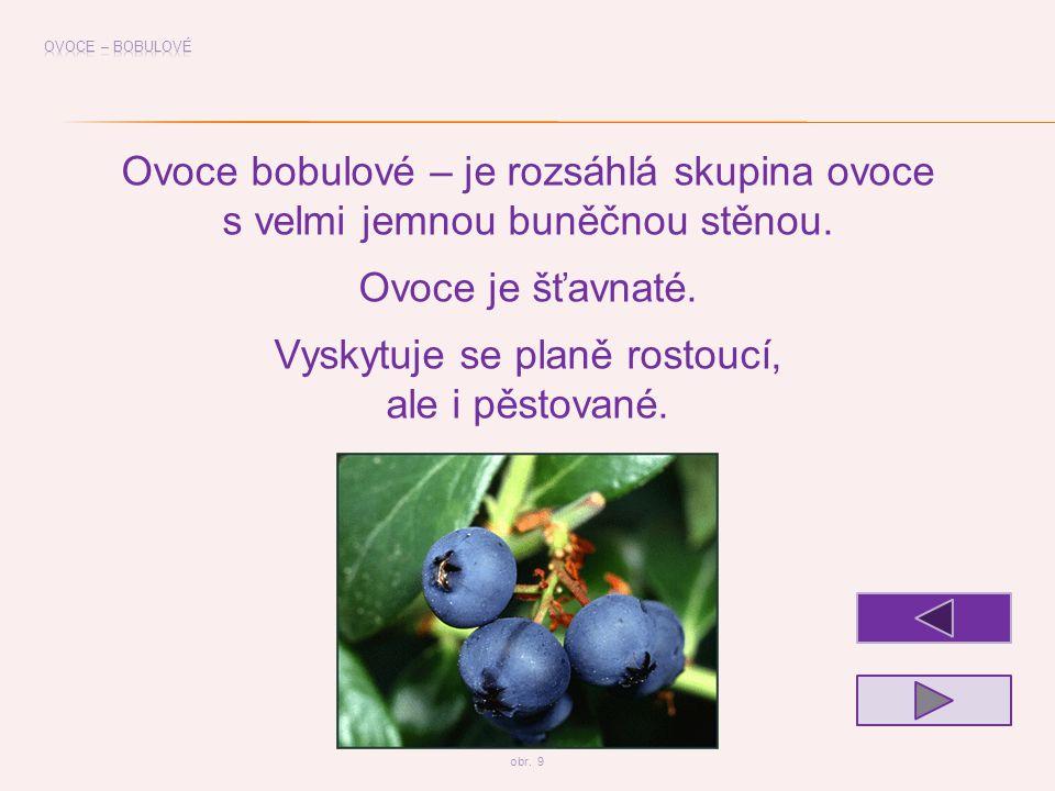 Ovoce bobulové – je rozsáhlá skupina ovoce
