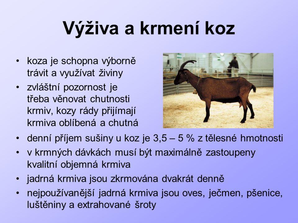 Výživa a krmení koz koza je schopna výborně trávit a využívat živiny