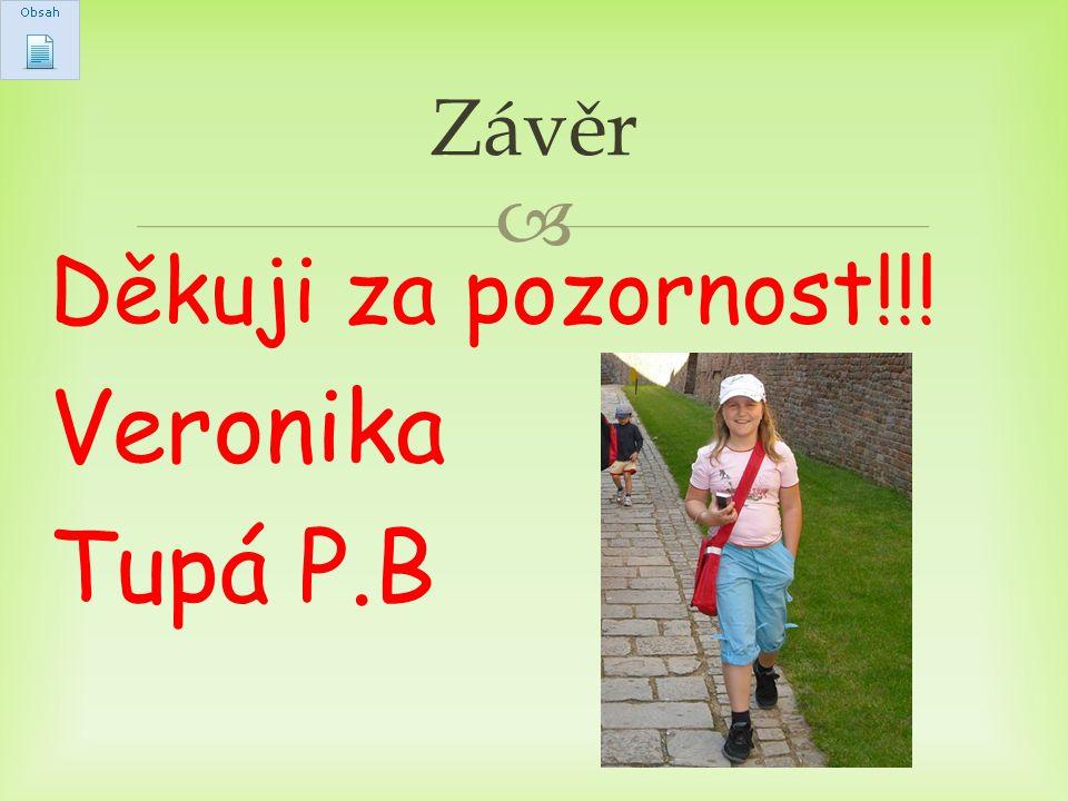 Závěr Děkuji za pozornost!!! Veronika Tupá P.B