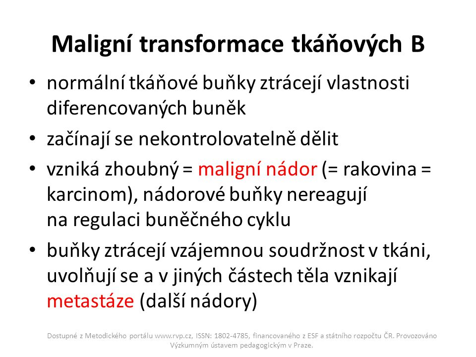 Maligní transformace tkáňových B