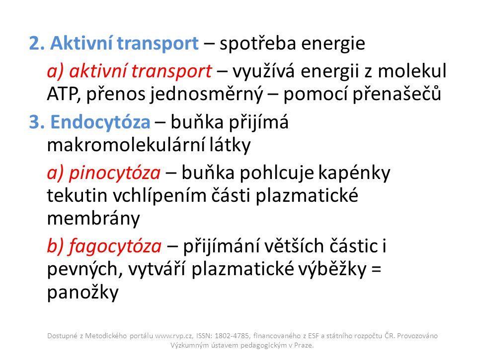 2. Aktivní transport – spotřeba energie