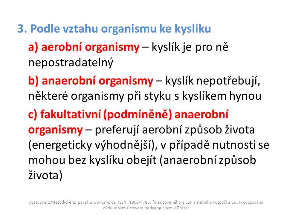 3. Podle vztahu organismu ke kyslíku