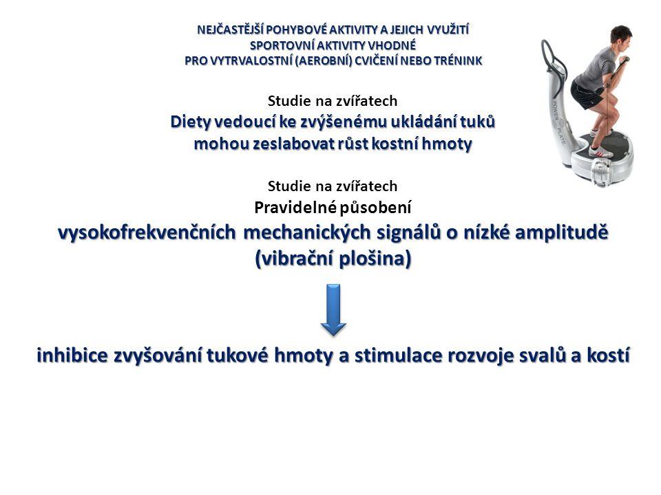 inhibice zvyšování tukové hmoty a stimulace rozvoje svalů a kostí