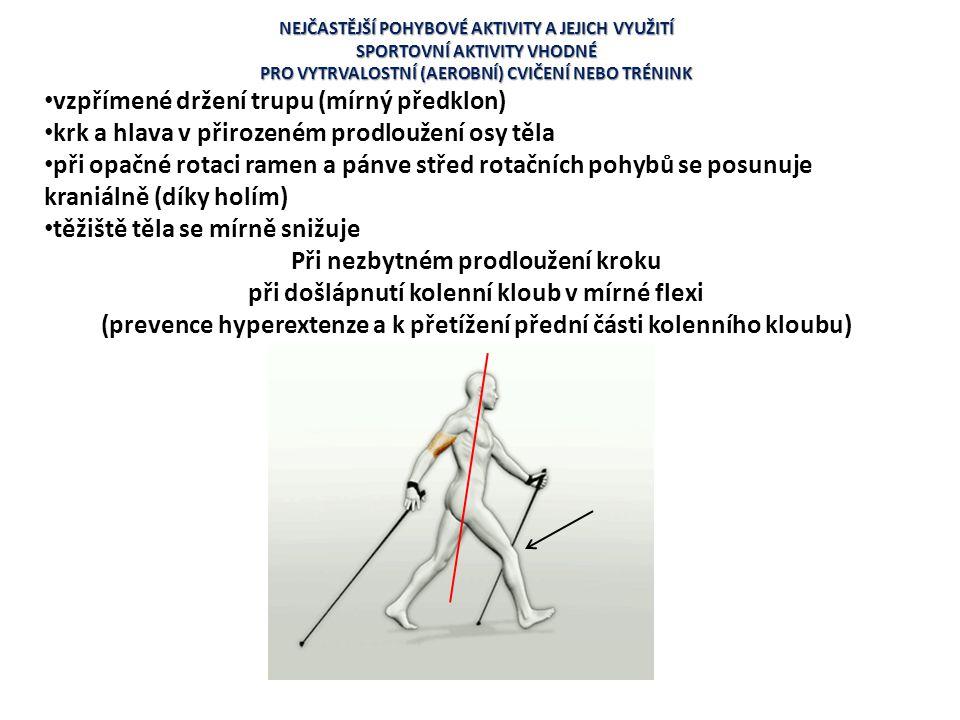 vzpřímené držení trupu (mírný předklon)