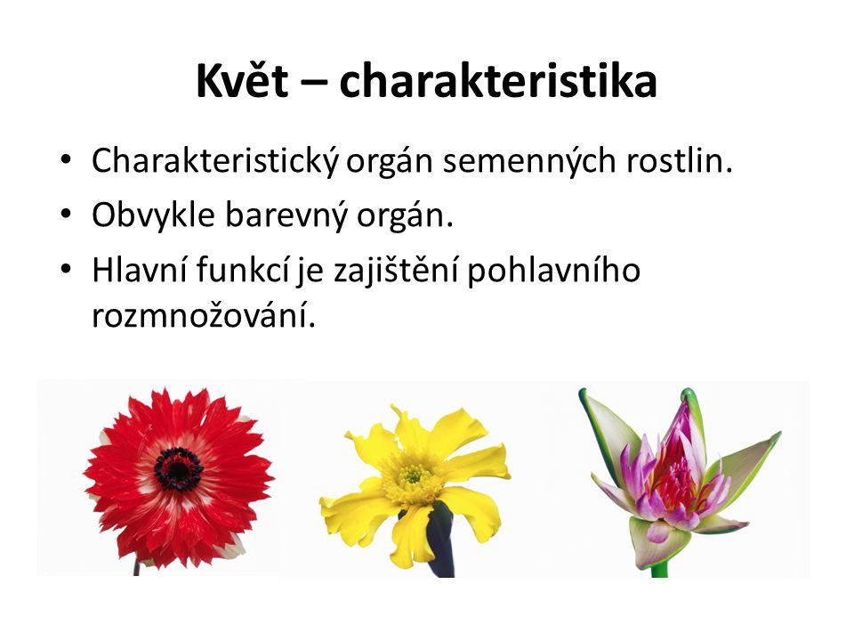 Květ – charakteristika