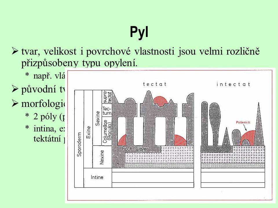 Pyl tvar, velikost i povrchové vlastnosti jsou velmi rozličně přizpůsobeny typu opylení. např. vláknitý pyl.