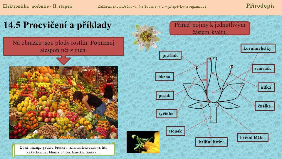 14.5 Procvičení a příklady Přiřaď pojmy k jednotlivým částem květu.
