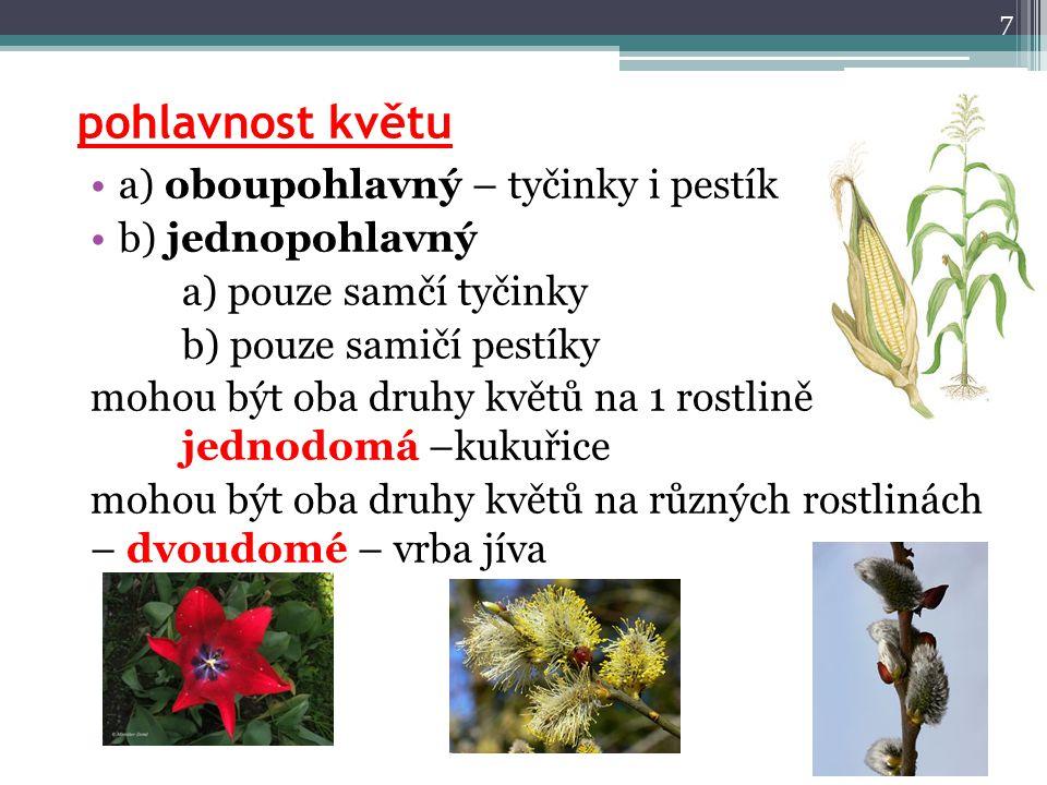 pohlavnost květu a) oboupohlavný – tyčinky i pestík b) jednopohlavný