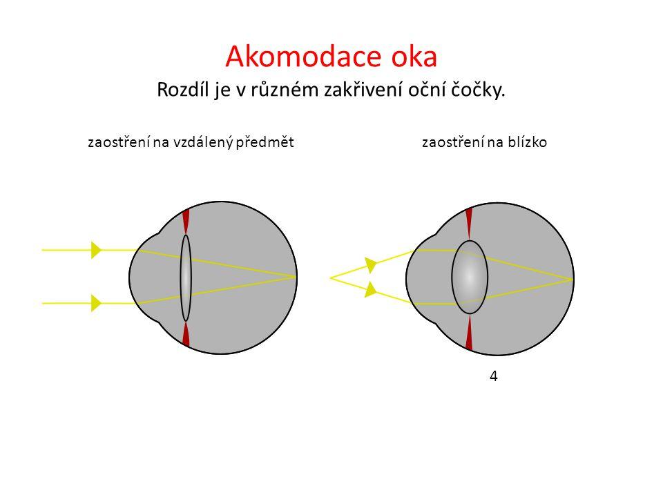Akomodace oka Rozdíl je v různém zakřivení oční čočky.