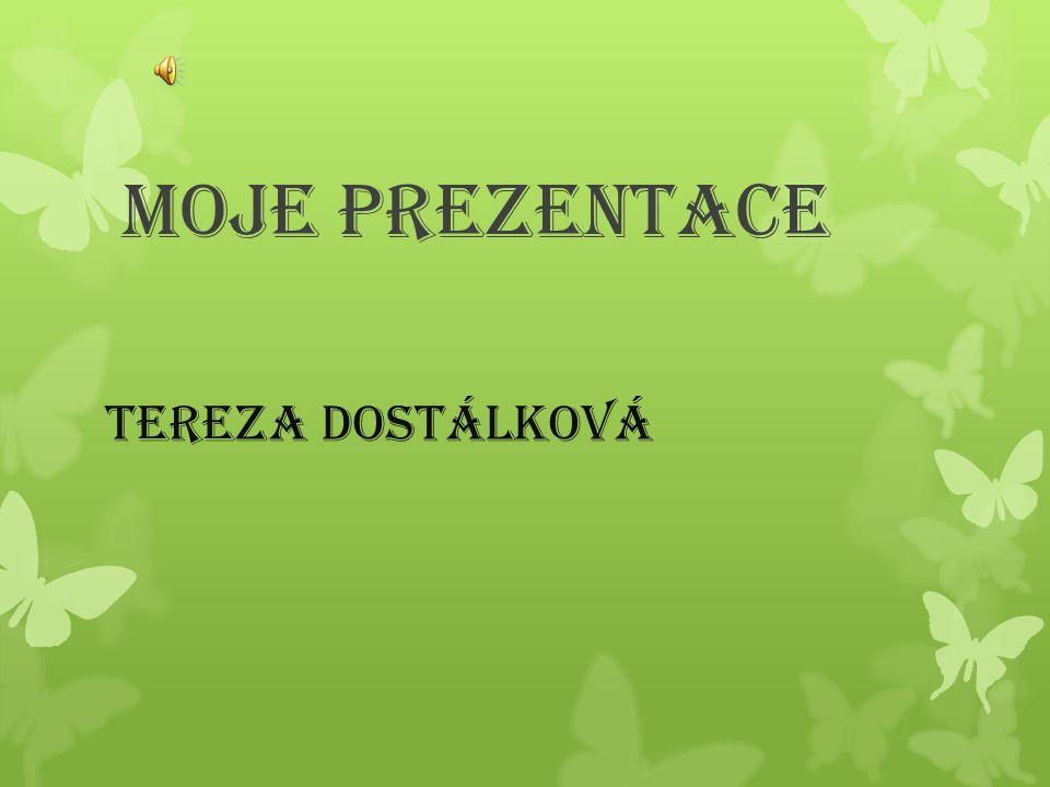 Moje prezentace Tereza Dostálková