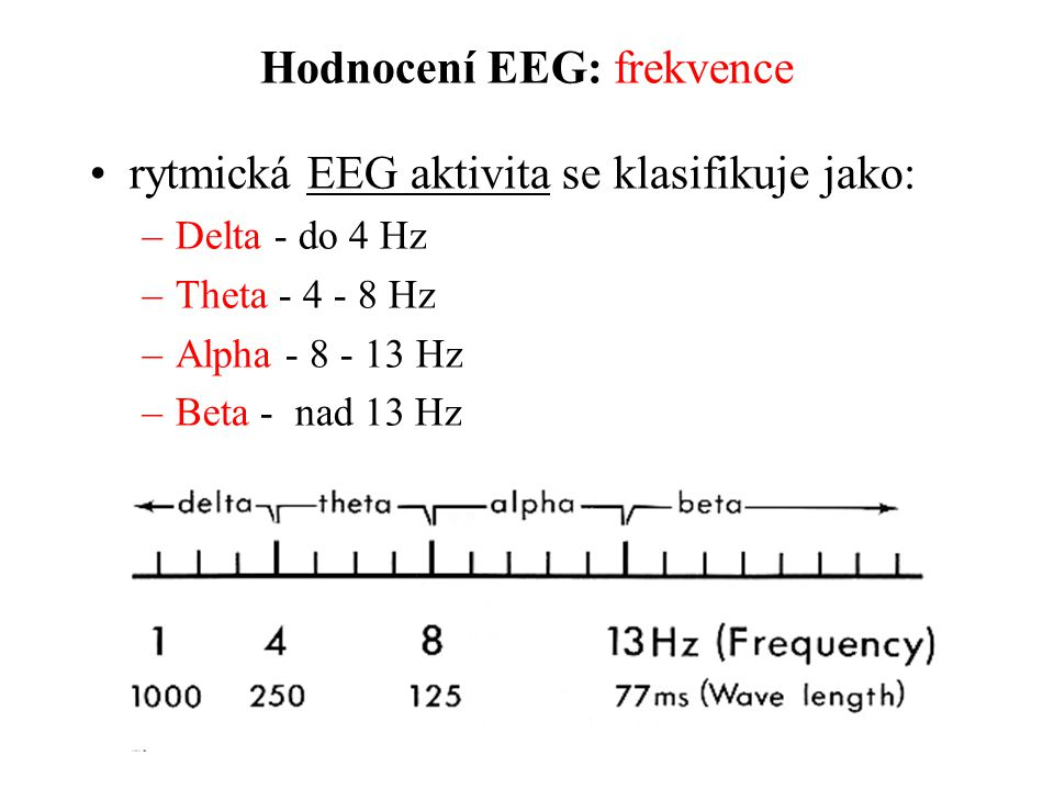 Hodnocení EEG: frekvence