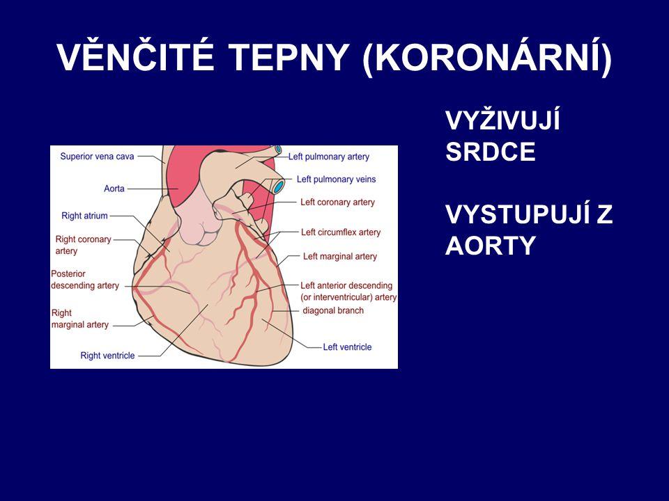VĚNČITÉ TEPNY (KORONÁRNÍ)