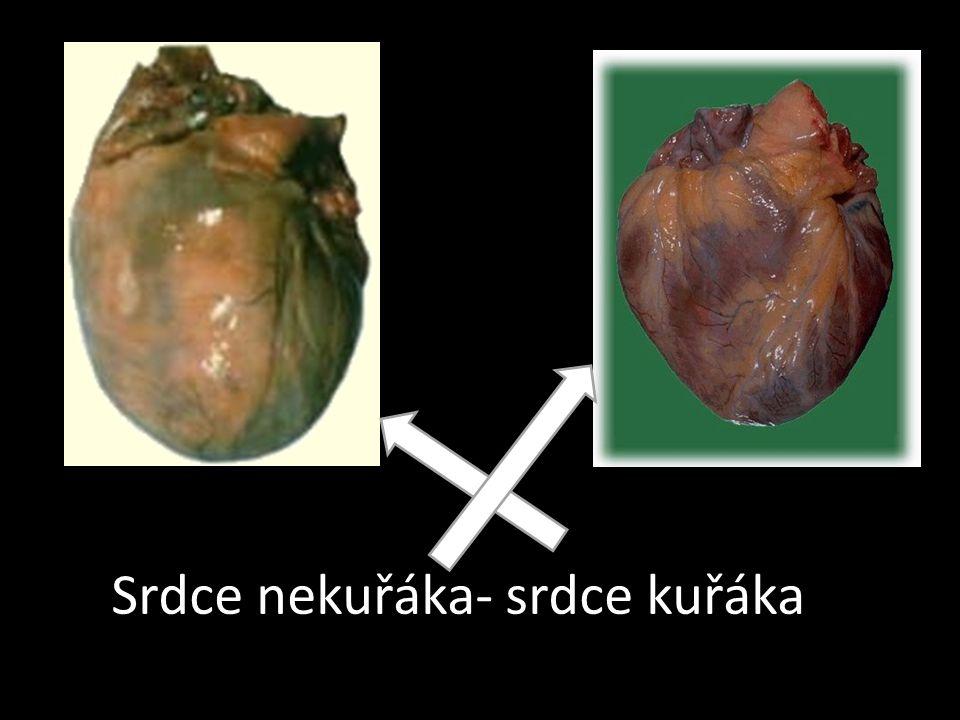 Srdce nekuřáka- srdce kuřáka