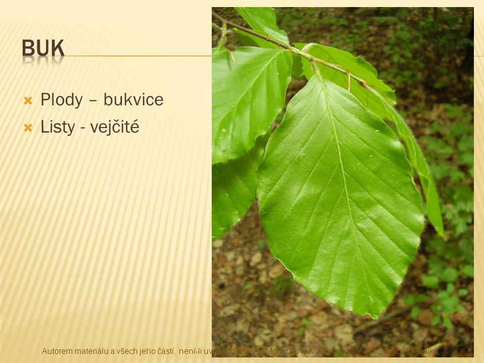 buk Plody – bukvice Listy - vejčité