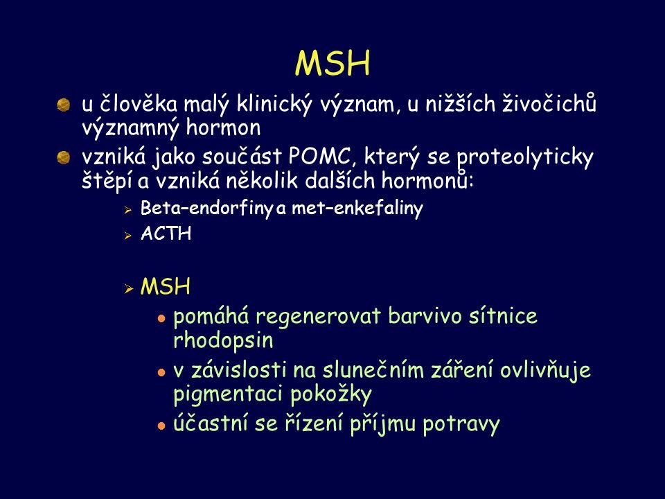 MSH u člověka malý klinický význam, u nižších živočichů významný hormon.