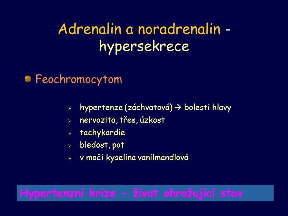Adrenalin a noradrenalin -hypersekrece