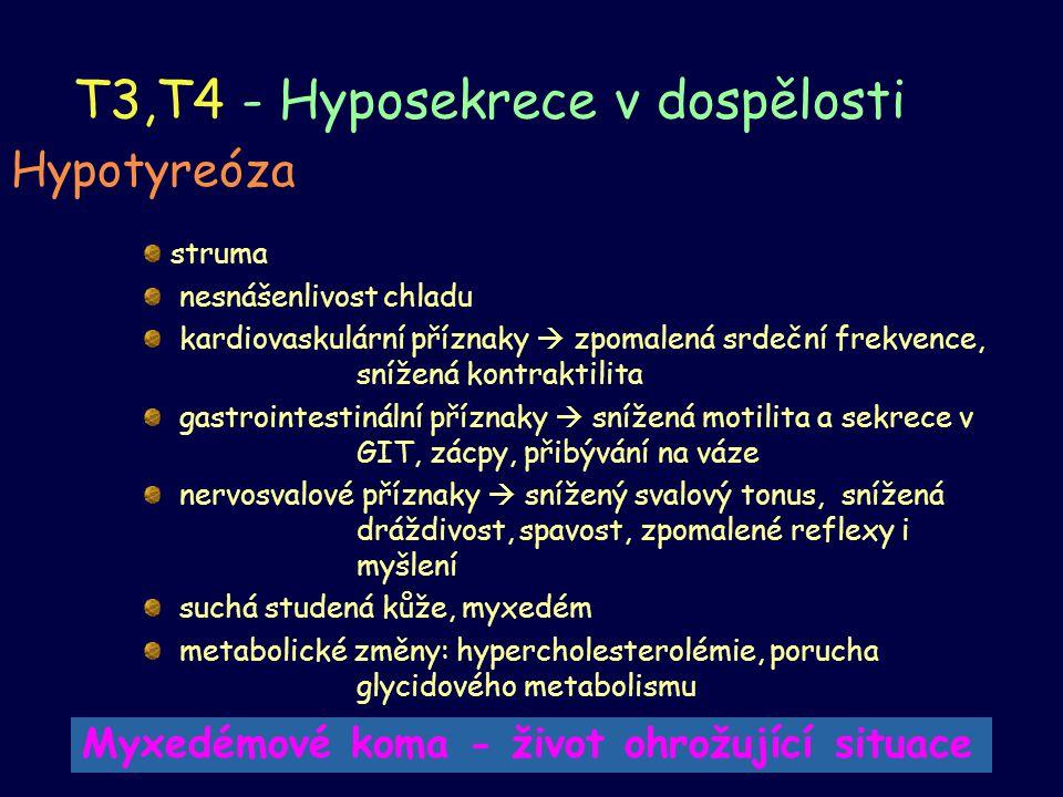 T3,T4 - Hyposekrece v dospělosti