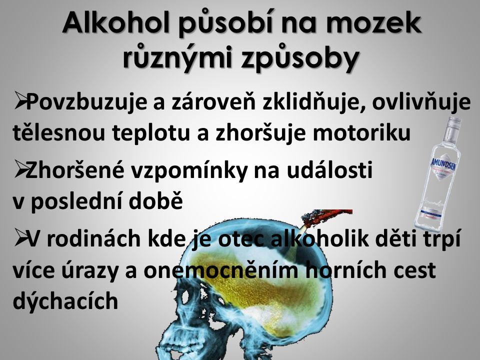 Alkohol působí na mozek různými způsoby