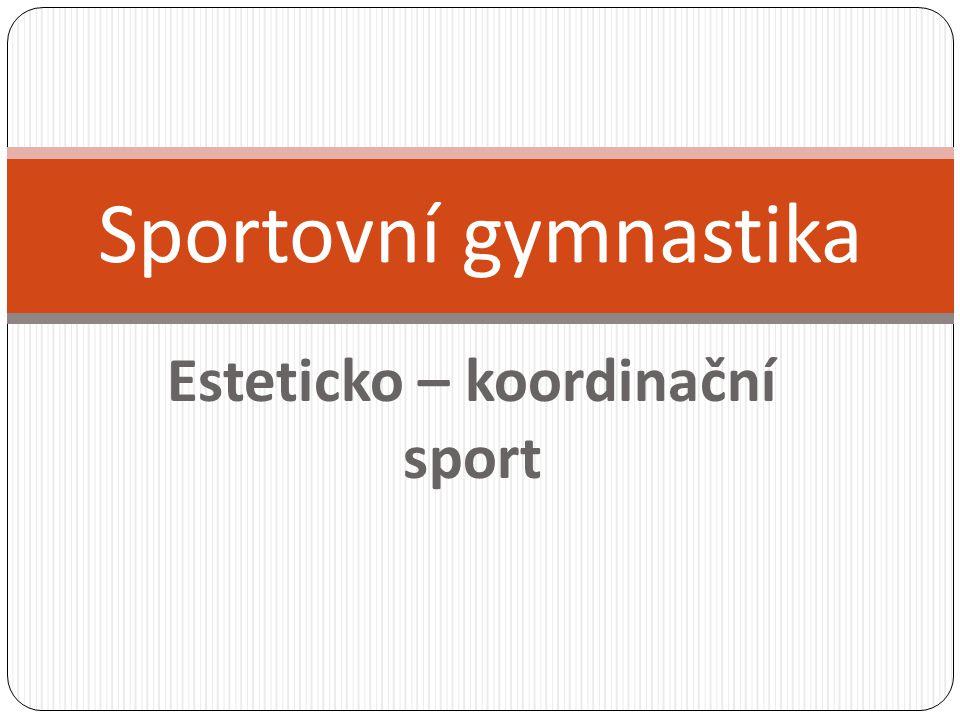 Esteticko – koordinační sport