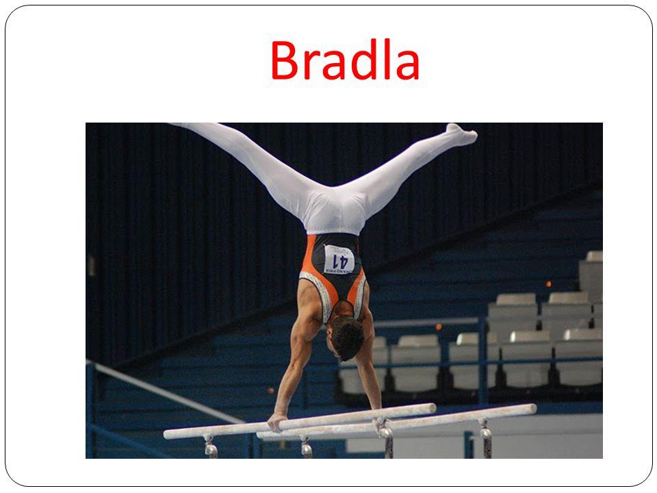 Bradla