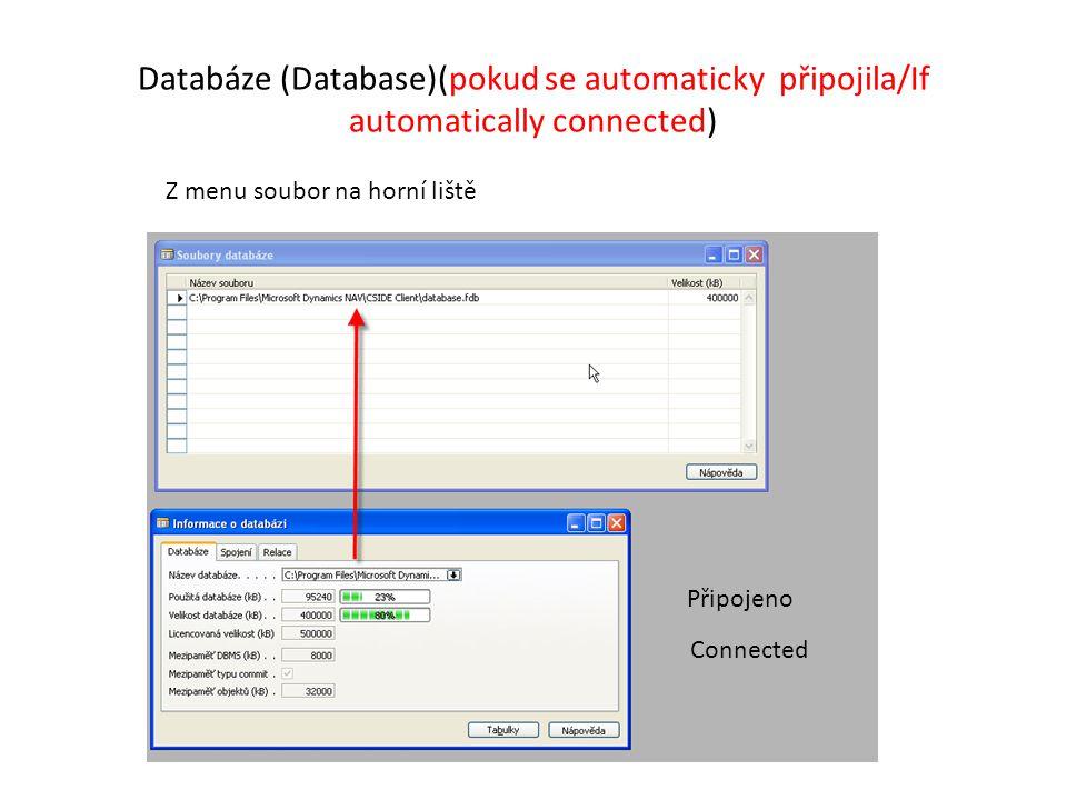 Databáze (Database)(pokud se automaticky připojila/If automatically connected)